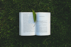 Read books to improve your writing sample and freelance writer application
